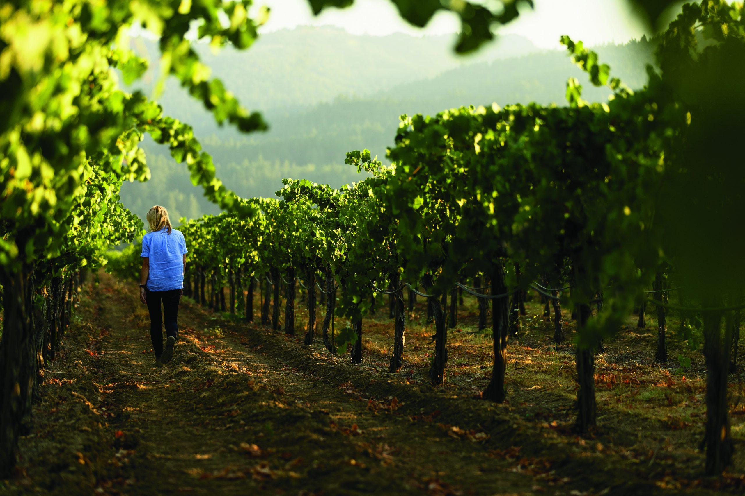 woman walking vineyard